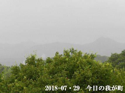 2018-07・29 今日の我が町.JPG