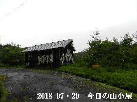 2018-07・29 今日の里山は・・・ (2).JPG