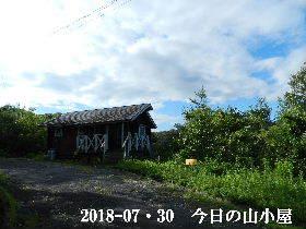 2018-07・30 今日の里山は・・・ (2).JPG