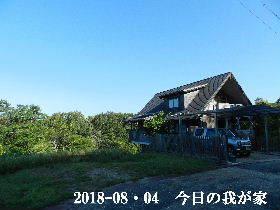 2018-08・04 今日の里山は・・・ (1).JPG