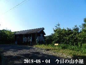 2018-08・04 今日の里山は・・・ (2).JPG