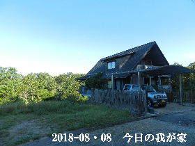 2018-08・08 今日の里山は・・・ (1).JPG
