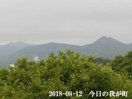 2018-08・12 今日の我が町.JPG