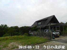 2018-08・12 今日の里山は・・・ (1).JPG
