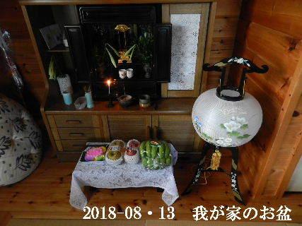 2018-08・13 我が家のスナップ・・・ (3).JPG