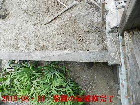2018-08・13 我が家のスナップ・・・ (4).JPG