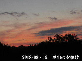 2018-08・19 里山の夕焼け (4).JPG