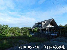 2018-08・20 今日の里山は・・・ (1).JPG