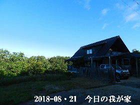 2018-08・21 今日の里山は・・・ (1).JPG