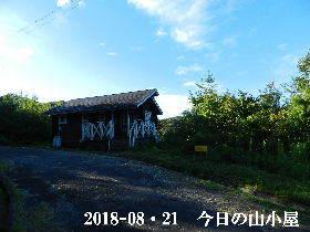 2018-08・21 今日の里山は・・・ (2).JPG