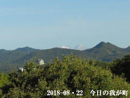 2018-08・22 今日の我が町.JPG