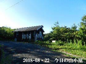 2018-08・22 今日の里山は・・・ (2).JPG