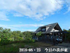 2018-08・23 今日の里山は・・・ (1).JPG
