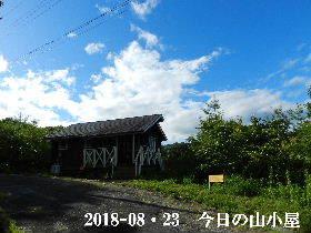 2018-08・23 今日の里山は・・・ (2).JPG