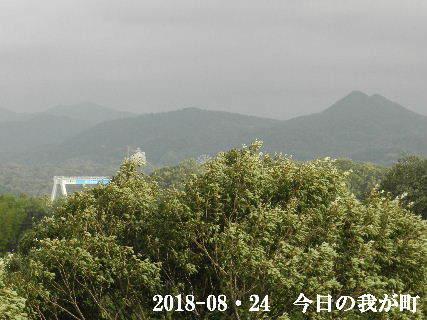 2018-08・24 今日の我が町.JPG