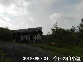 2018-08・24 今日の里山 (2).JPG