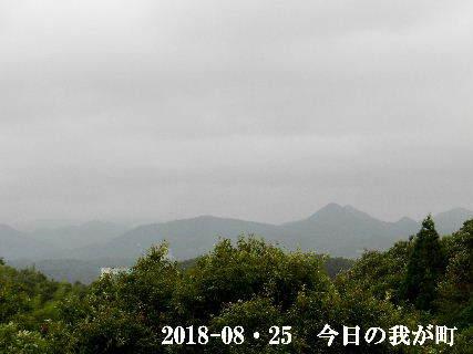 2018-08・25 今日の我が町.JPG