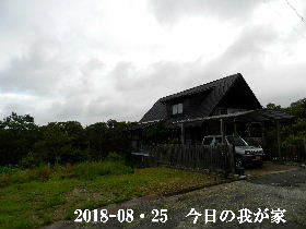 2018-08・25 今日の里山は・・・ (1).JPG