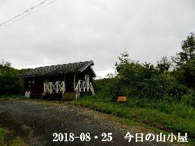 2018-08・25 今日の里山は・・・ (2).JPG
