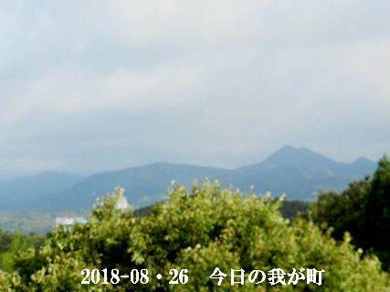 2018-08・26 今日の我が町.JPG
