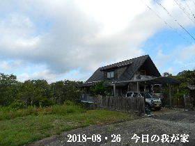 2018-08・26 今日の里山は・・・ (1).JPG