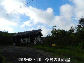 2018-08・26 今日の里山は・・・ (2).JPG