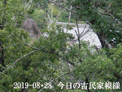 2018-08・28 今日の古民家模様.JPG
