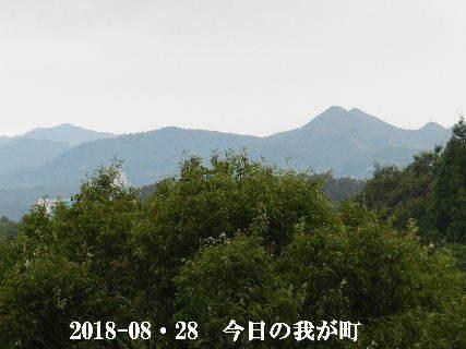 2018-08・28 今日の我が町.JPG