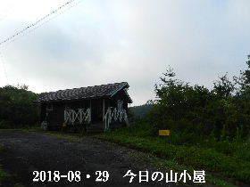 2018-08・29 今日の里山は・・・ (2).JPG