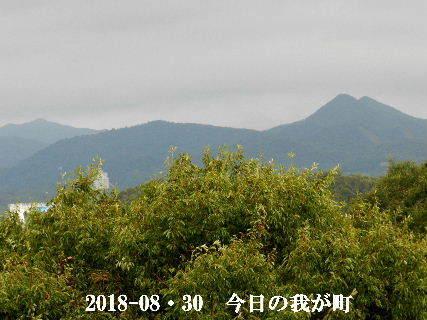 2018-08・30 今日の我が町.JPG