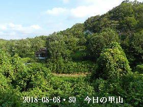 2018-08・30 今日の里山は・・・ (4).JPG