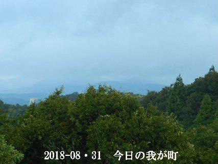 2018-08・31 今日の我が町.JPG