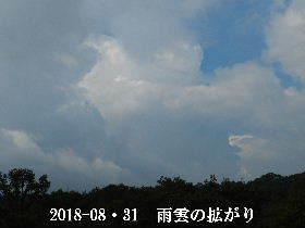 2018-08・31 積乱雲が発生中 (1).JPG