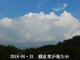 2018-08・31 積乱雲が発生中 (2).JPG