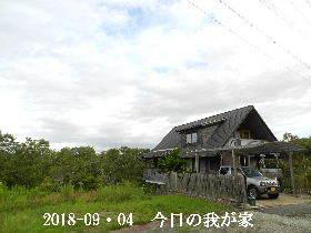 2018-09・04 今日の里山は・・・ (1).JPG