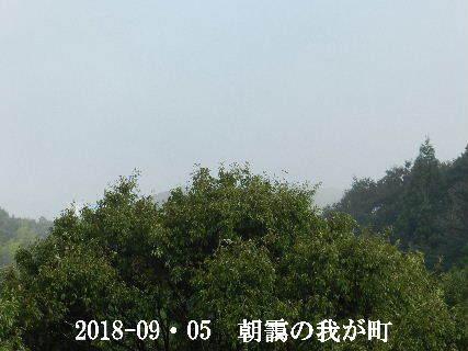 2018-09・05 今日の我が町.JPG