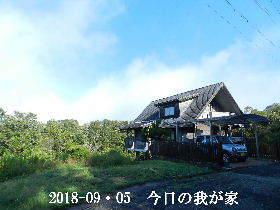 2018-09・05 今日の里山は・・・ (1).JPG