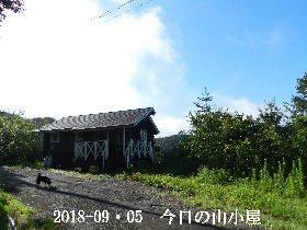 2018-09・05 今日の里山は・・・ (2).JPG
