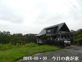 2018-09・08 今日の里山は・・・ (1).JPG