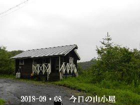 2018-09・08 今日の里山は・・・ (2).JPG