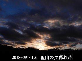 2018-09・10 里山の夕暮れ時 (2).JPG