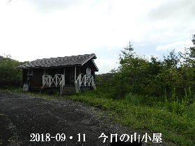 2018-09・11 今日の里山は・・・ (2).JPG