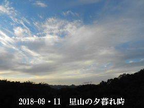 2018-09・11 里山の夕暮れ時 (2).JPG