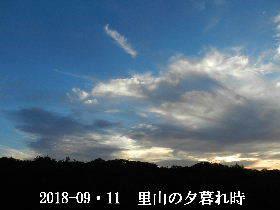 2018-09・11 里山の夕暮れ時 (3).JPG