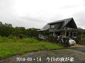 2018-09・14 今日の里山は・・・ (1).JPG