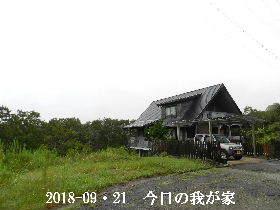 2018-09・21 今日の里山は・・・ (1).JPG