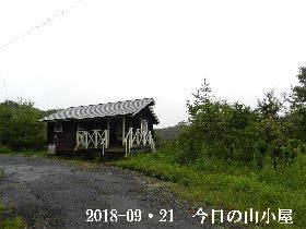 2018-09・21 今日の里山は・・・ (2).JPG