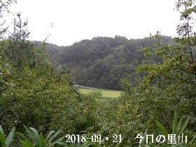 2018-09・21 今日の里山は・・・ (3).JPG