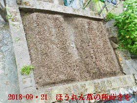 2018-09・21 我が家のスナップ・・・ (6).JPG