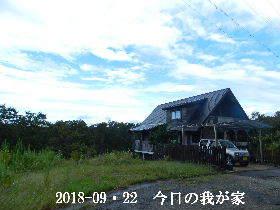 2018-09・22 今日の里山は・・・ (1).JPG